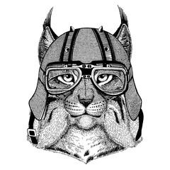 Lynx, wild cat, bobcat, trot wearing a motorcycle, aero helmet. Hand drawn image for tattoo, t-shirt, emblem, badge, logo, patch.
