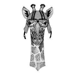 Camelopard, giraffe wearing a motorcycle, aero helmet. Hand drawn image for tattoo, t-shirt, emblem, badge, logo, patch