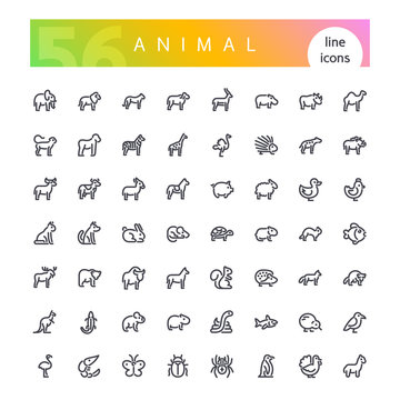 Set of 56 animals from africa, australia, forest, sea, mammals, birds, reptiles, fish, insects and other line icons suitable for web, infographics and apps. Isolated on white background. Clipping