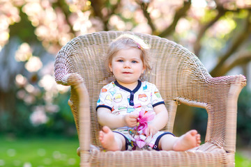 Cute little baby girl sitting on big chair in garden. Beautiful happy smiling toddler with blooming pink magnolia tree on background. Healthy child enjoying spring season.