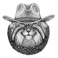 Wild cat Manul wearing cowboy hat. Wild west animal. Hand drawn image for tattoo, emblem, badge, logo, patch, t-shirt