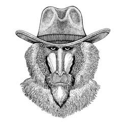 Monkey, baboon, dog-ape, ape Hand drawn image for tattoo, emblem, badge, logo, patch