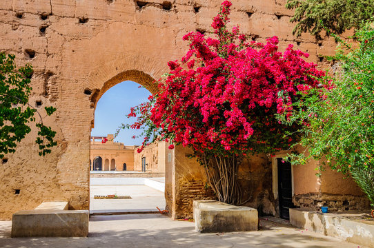 Red flowers in Badi Palace Marrakech, Morocco