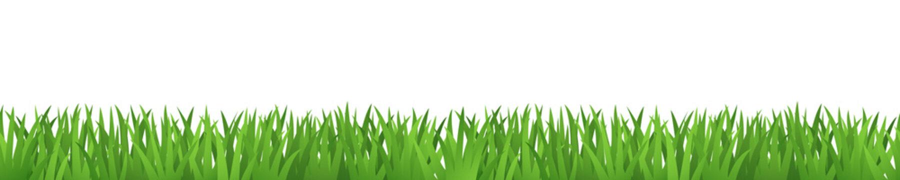 Gras Banner Hintergrund wiederholend