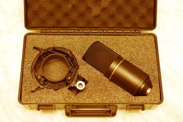 Professional studio condenser microphone lies in the case for storing the microphone