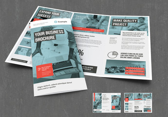 Trifold Brochure with Coral and Gray Accents