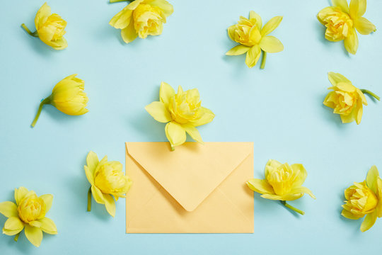 top view of yellow narcissus flowers and yellow envelope on blue