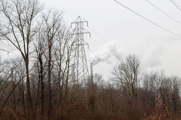 The tall power tower and smoke stacks in the background.
