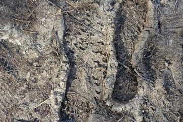 A close view of the rough surface texture of the stone.
