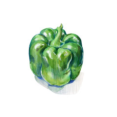 green bell pepper on white background