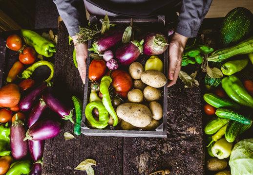 Farmer with zucchini