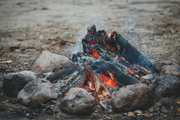 Closeup of bonfire in the wood