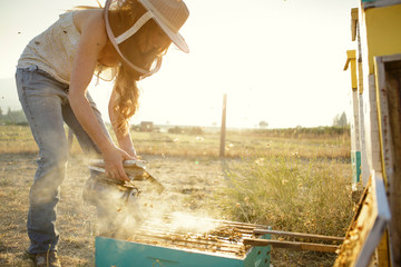 Woman beekeeper pours smoke on bee hive in wooden box