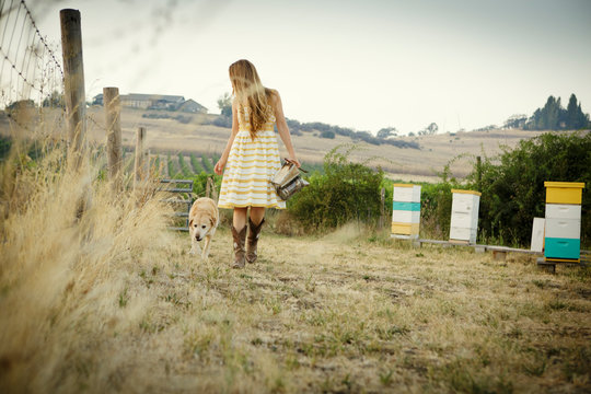 Woman in sundress walks by bee hive boxes with dog