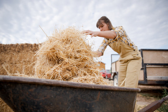 Woman farmer piling hay in a wheelbarrow
