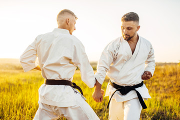 Two karate fighters on outdoor training fight