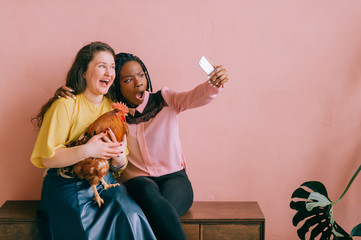 Odd excited interracial female couple with funny laughing faces and domestic cock in hand take selfie with phone on pink background. New trend concept - unusual pet. Interantional women friendship.