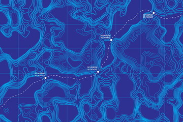 Canvas Prints Violet View From Above Lie Of The Ground Conceptual Vector Topographic Map With Route And Coordinates Abstract Blue Background. Topography Landscape. Topography Geography. Topographic Map