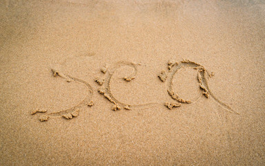"""text on sand beach sea written words """"sea"""" top view - holiday relax concept"""