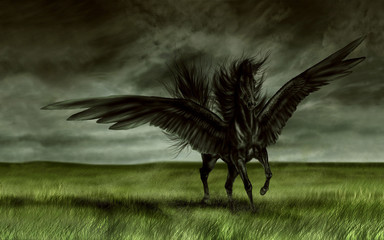 3d illustration fantasy graphic background of a black horse in a field