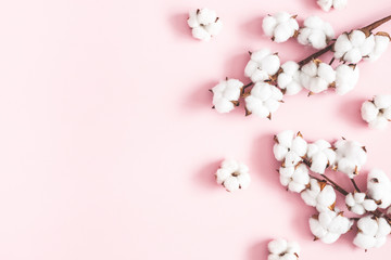Flowers composition. Cotton flowers on pastel pink background. Flat lay, top view