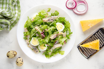 Fresh salad with salted herring, fish, lettuce, boiled quail eggs, red onions and hard Parmesan cheese. Delicious lunch, spring green food