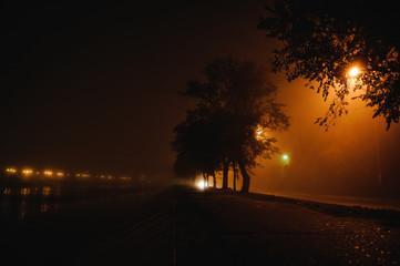 Night cityscape in the fog