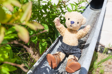 Summer Fun on Downpipe / Little rascal teddy enjoy life by slide down at open rainwater pipe