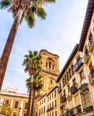Rue de Grenade et la cathédrale en Andalousie, Espagne