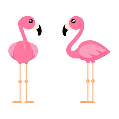 cartoon cute flamingo from the front set vector