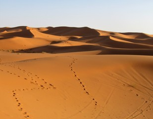 Fotobehang Afrika Spectacular views in Sahara Desert. Sun colours its Beautiful Sand Dunes and creates astonishing shadows effects. Camel trekking and night in tents is a must