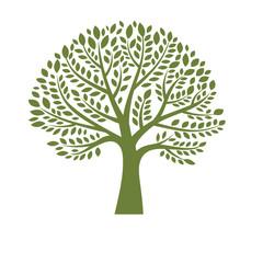 Green tree silhouette on white background, logo design template
