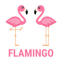 cartoon flamingo boy and girl vector with text