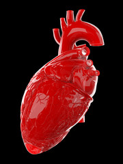 3d rendered medically accurate illustration of a red glossy human heart