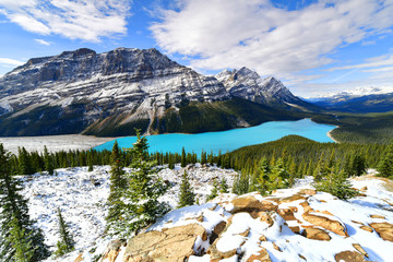 Wall Mural - View from Bow Summit of Peyto lake in Banff National Park, Alberta, Canada.
