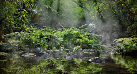 Foto auf Leinwand Fantasie-Landschaft A magic morning in the jungle. Morning mist rising over the creek, several sunbeams lighting down the tropical plants. The Stoney Creek, Kamerunga, Cairns, Far North Queensland, Australia.