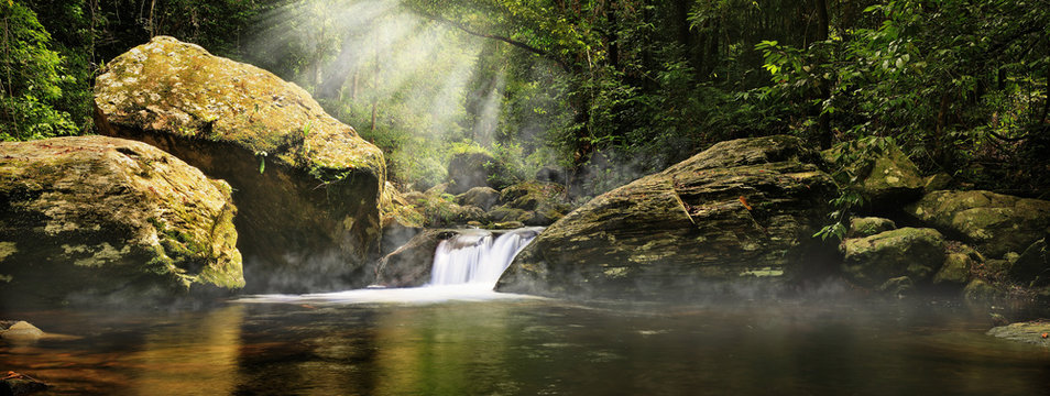 A magic morning in the jungle. Morning mist rising over the creek,  several sunbeams lighting down the tropical plants. The Stoney Creek, Kamerunga, Cairns, Far North Queensland, Australia.