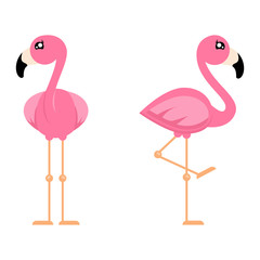 cartoon cute flamingo girl set from the front vector