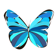 colorful butterfly, contour, blue