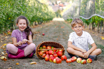 Portrait of little girl and kid boy with red apples in organic orchard. Happy siblings, children, brother and sister picking ripe fruits from trees and having fun. Harvest season for family.