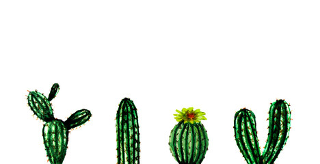 Watercolor hand painted exotic green cactus collection. Set of tropic plants. Mexican style background template