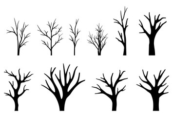 Collection of trees silhouettes on white background