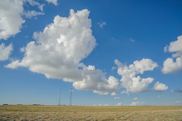 Road in the steppe on a sunny day on the background of grass and cloudy sky