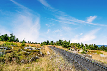 Railroad tracks in a dry nature landscape