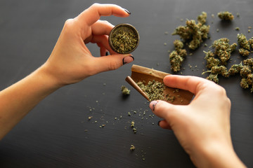 Woman preparing and rolling marijuana cannabis joint. Marijuana use concept. Woman rolling a marijuana joint. Close up of marijuana blunt with grinder. Top view