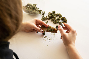 Cannabis use concept. Woman preparing and rolling marijuana cannabis joint. Woman rolling a marijuana blunt on white background. Close up of marijuana blunt with grinder.