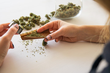 Woman preparing and rolling marijuana cannabis joint. Woman rolling a marijuana blunt on white background. Close up of marijuana blunt with grinder. Cannabis use concept.