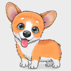 Cute cartoon Dog Corgi