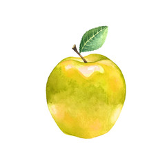 Watercolor yellow apple with leaf. Illustration of a sweet fruit on a white background. Isolated drawing.