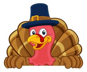 Pilgrim Turkey Thanksgiving bird animal cartoon character wearing a pilgrims hat. Peeking over a background sign